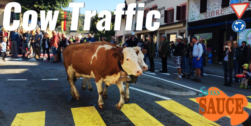 Désalpes in St. Cergue. Cows walk through the centre of town.